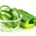 Aloe Anwendung Verwendung Wirkung