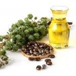 Rizinusöl Rizinus Öl Wirkung Anwendung