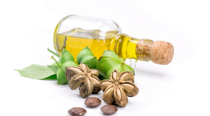 Sacha Inchi Öl Wirkung Anwendung