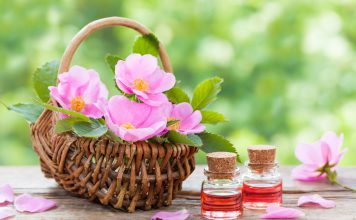 Wildrosenöl Wildrosen Öl Anwendung Wirkung